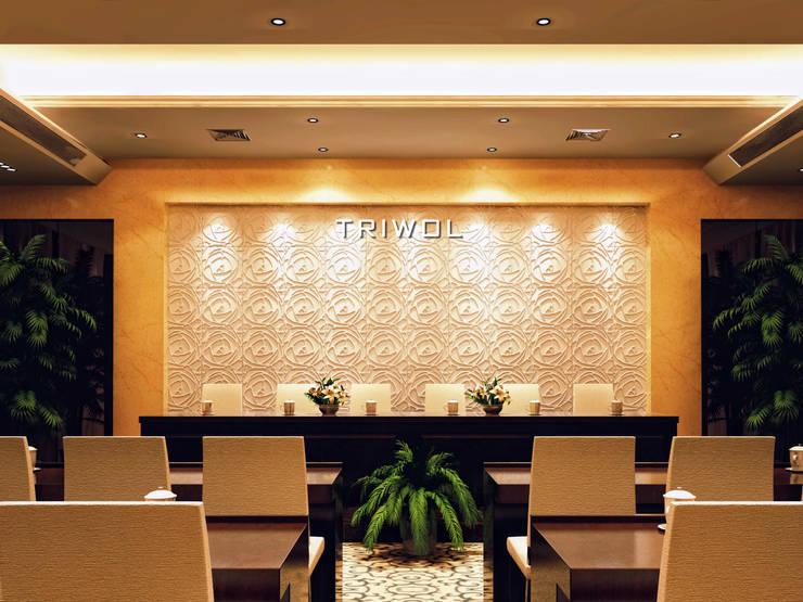 Group Enerji Yapı Dekorasyon – TRIWOL PEONY 3D DUVAR PANELİ:  tarz Duvarlar, Rustik