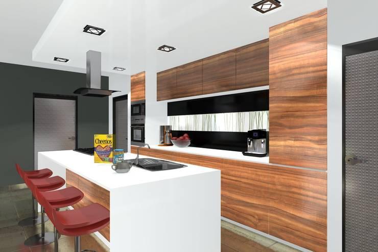 DZP-9 – dom energooszczędny i pasywny: styl , w kategorii Kuchnia zaprojektowany przez ABC Pracownia Projektowa Bożena Nosiła - 1