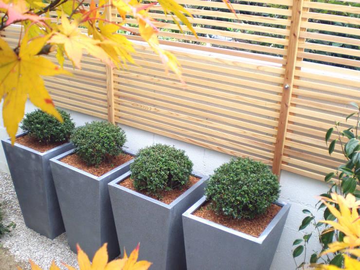 courtyard N1: 山越健造デザインスタジオ Kenzo Yamakoshi Design Studioが手掛けた医療機関です。