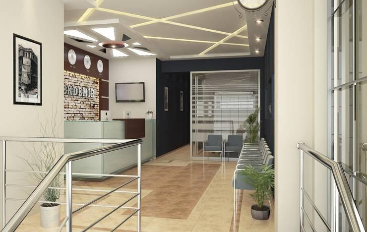 ROAS ARCHITECTURE 3D DESIGN – Entrance:  tarz Ofis Alanları