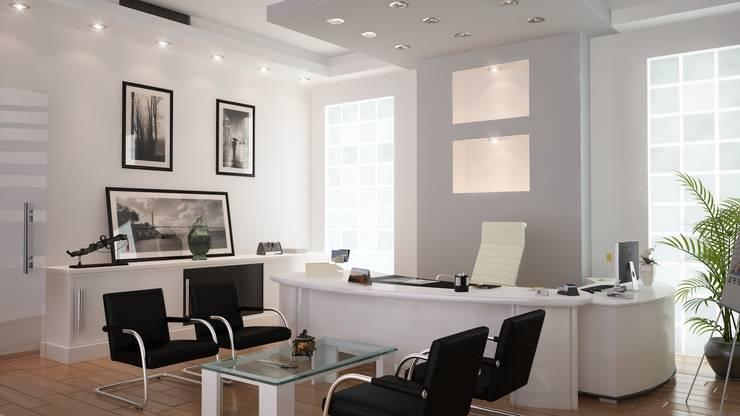 ROAS ARCHITECTURE 3D DESIGN – Cice Chairman of the Board Room:  tarz Ofis Alanları