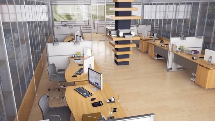 ROAS ARCHITECTURE 3D DESIGN – Accounting Department:  tarz Ofis Alanları