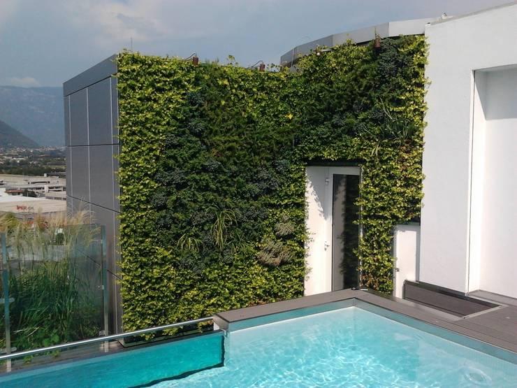 Terrasse von Sundar Italia