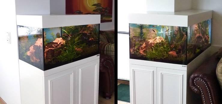 Aquariumschrank in L-Form: ausgefallene Wohnzimmer von PYRA-Designmoebel.de
