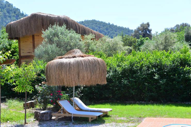 Pure Life Organic Villa – Pure Life Organic Villa:  tarz Oteller, Kırsal/Country