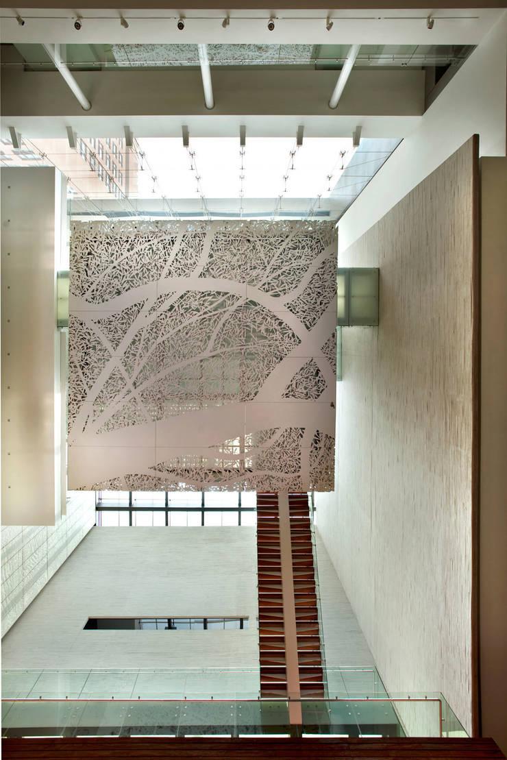 Museo Memoria y Tolereancia de Arditti arquitectos