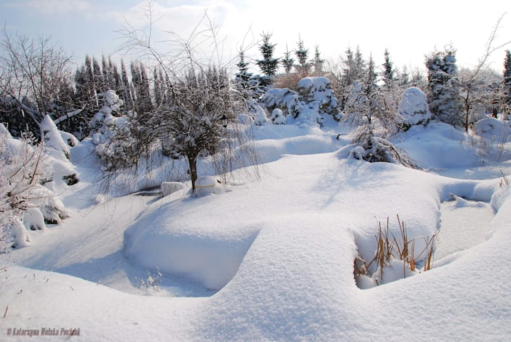 Zima na wyspie: styl , w kategorii Ogród zaprojektowany przez Centrum ogrodnicze Ogrody ResGal