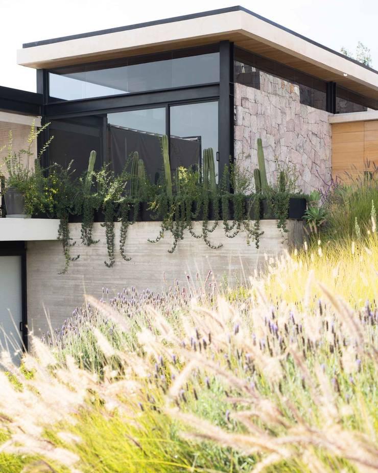 CASA OCHO JARDINES : Terrazas de estilo  por Polen Diseño Vivo