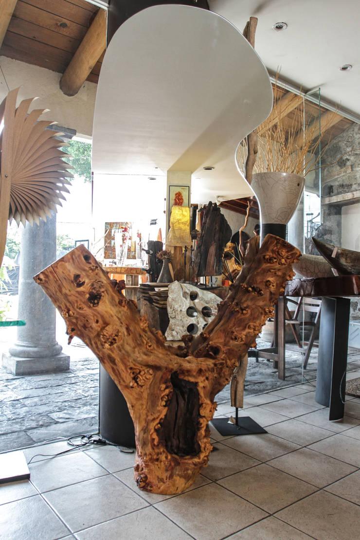 Magic Mirror: Oficinas y tiendas de estilo  por Cenquizqui