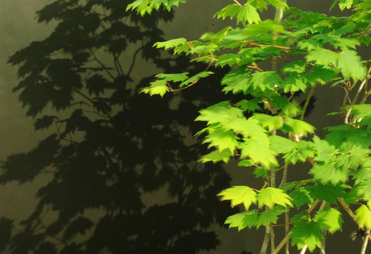 garden M3: 山越健造デザインスタジオ Kenzo Yamakoshi Design Studioが手掛けた庭です。