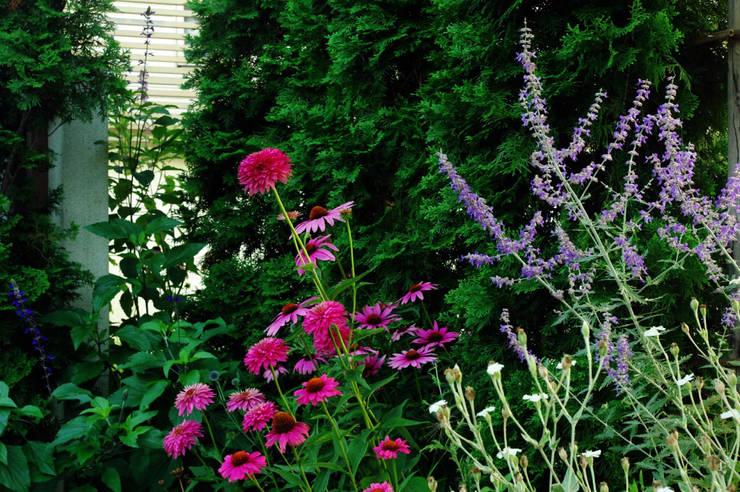 garden M6: 山越健造デザインスタジオ Kenzo Yamakoshi Design Studioが手掛けた庭です。