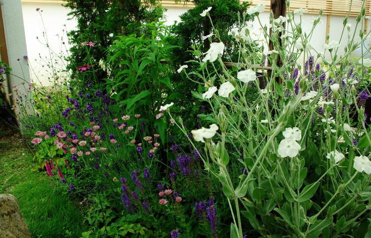 garden M4: 山越健造デザインスタジオ Kenzo Yamakoshi Design Studioが手掛けた庭です。