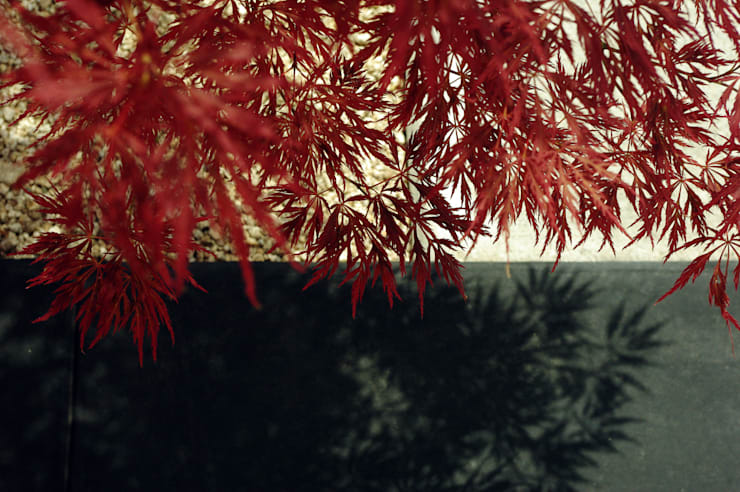 garden M7: 山越健造デザインスタジオ Kenzo Yamakoshi Design Studioが手掛けた庭です。