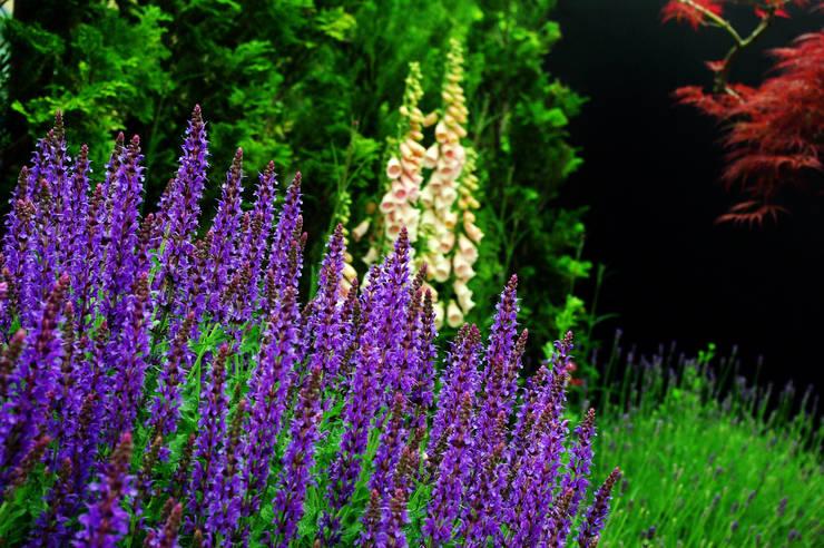 garden M14: 山越健造デザインスタジオ Kenzo Yamakoshi Design Studioが手掛けた庭です。