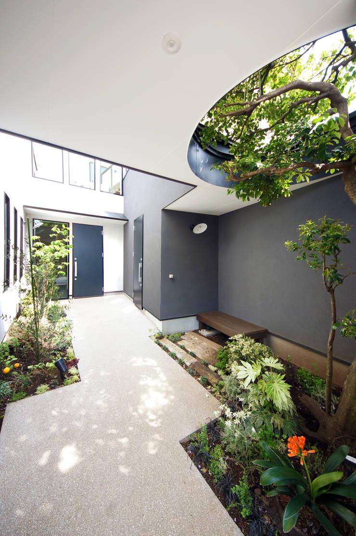 緑豊かなアプローチ: TERAJIMA ARCHITECTSが手掛けた庭です。
