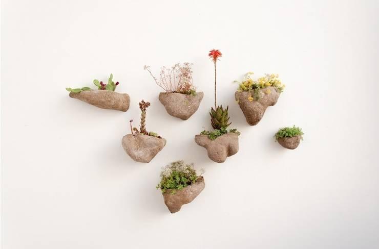 Projekty,  Zieleń wewnątrz zaprojektowane przez Julie Martin