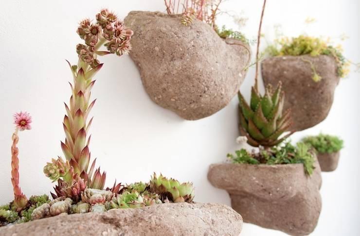 Wedding Plant - Mineral: Paysagisme d'intérieur de style  par Julie Martin
