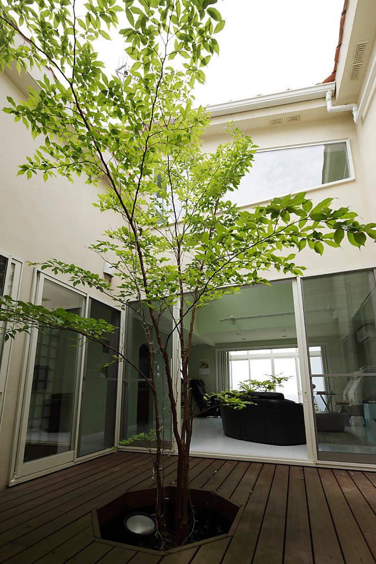 プロバンス風住宅(富津): 有限会社タクト設計事務所が手掛けた庭です。