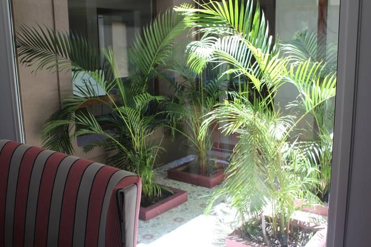 patio: Jardines de estilo moderno por BAIRES GREEN MUEBLES