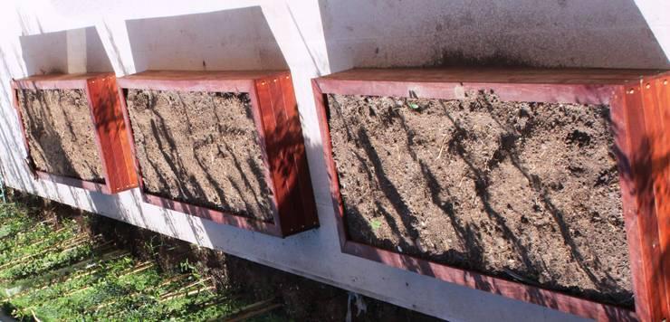 huertas: Jardines de estilo  por BAIRES GREEN