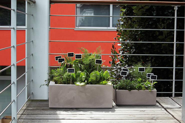 Donice MINOS: styl , w kategorii Balkon, weranda i taras zaprojektowany przez Hydroponika - Wnętrz i zieleń,