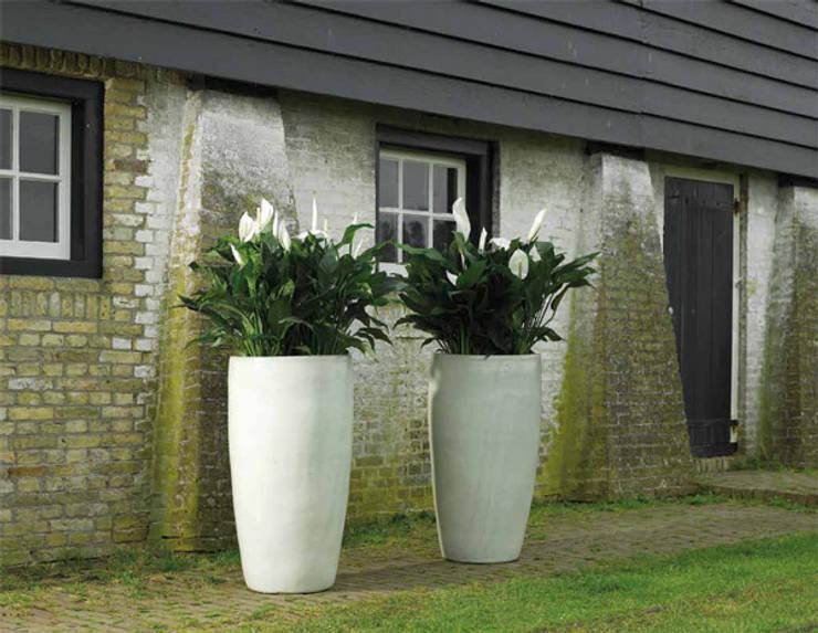 Donice WHITE PARTNER: styl , w kategorii Ogród zaprojektowany przez Hydroponika - Wnętrz i zieleń,