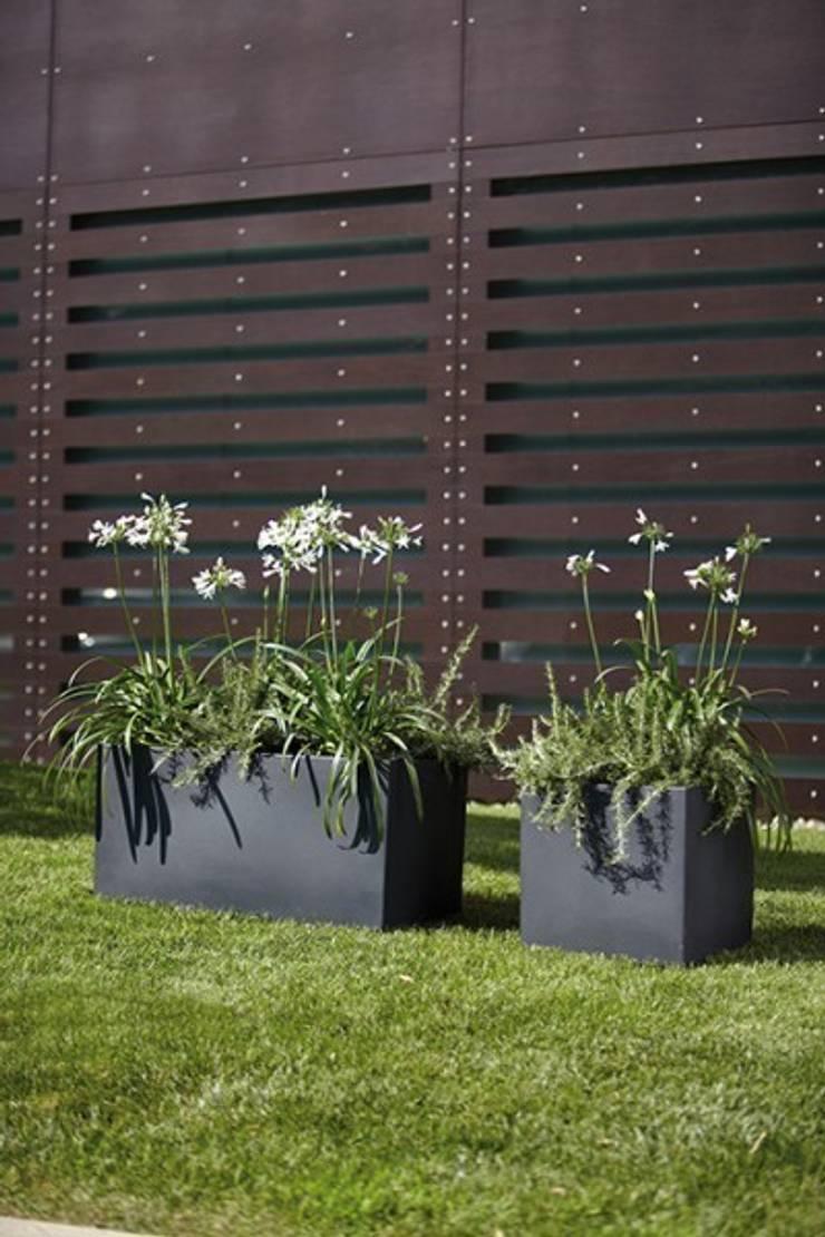 Donice MODUS: styl , w kategorii Ogród zaprojektowany przez Hydroponika - Wnętrz i zieleń,