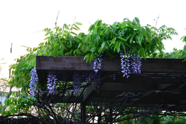 Cubierta vegetal: Jardín de estilo  de Slabon  Forja Creativa
