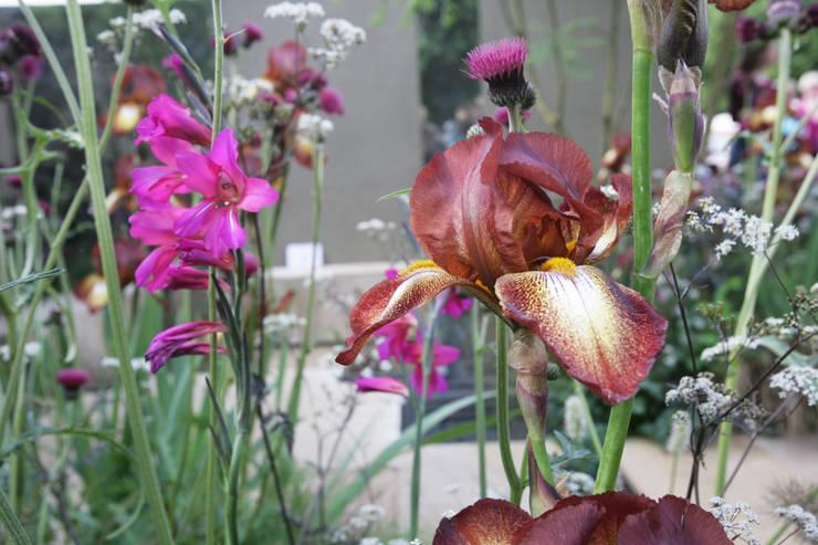 Iris Ruggine: Giardino in stile  di Anna Paghera s.r.l. - Green Design