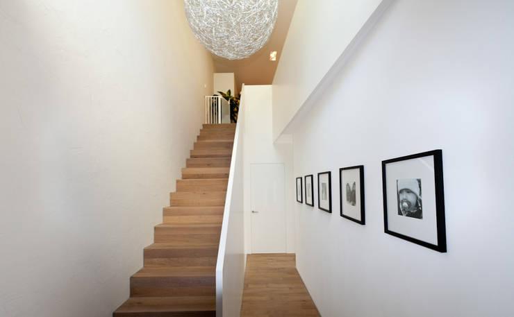 EFH Neubau bei Aarau:  Flur & Diele von wernli architektur ag