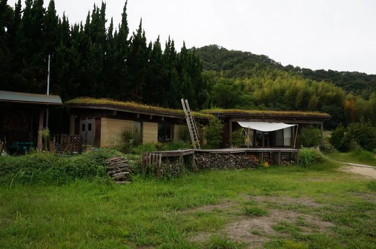 Ausgefallene Häuser von 虎設計工房 Ausgefallen Massivholz Mehrfarbig