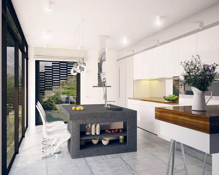 Private house: styl , w kategorii Kuchnia zaprojektowany przez Shtantke Interior Design,Nowoczesny