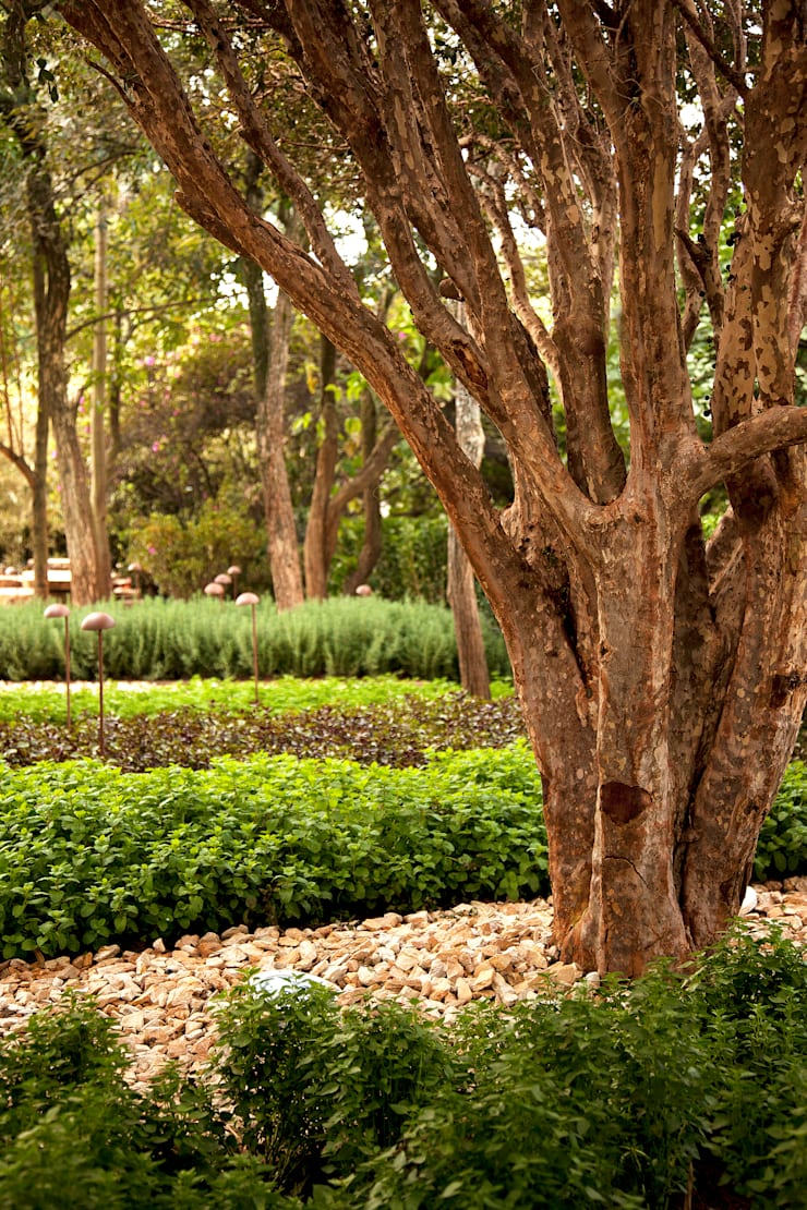 MOSTRA BLACK 2012: Jardins  por Hanazaki Paisagismo