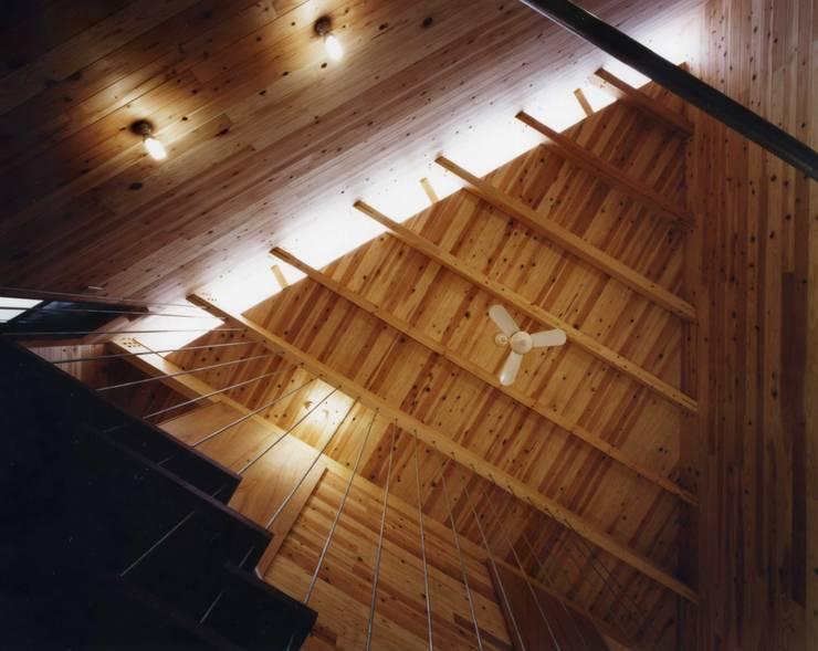 金岡のアトリエ: Y's建築工房 一級建築士事務所が手掛けた廊下 & 玄関です。,