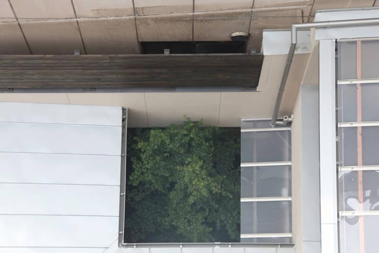 上部から見た中庭 の atelier m