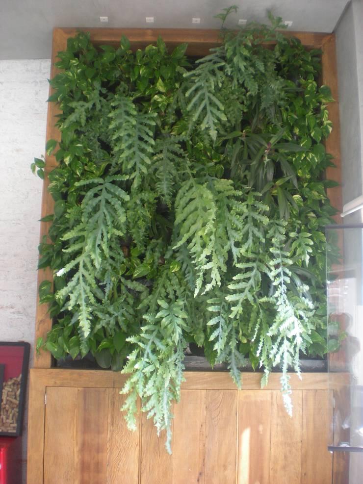 jardim vertical: Jardins  por Top Gardens Paisagismo Vertical,Tropical