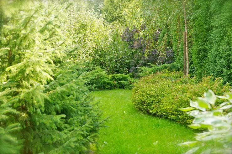 Ogród pełen zieleni: styl , w kategorii Ogród zaprojektowany przez Pracownia Projektowa Architektury Krajobrazu Januszówka