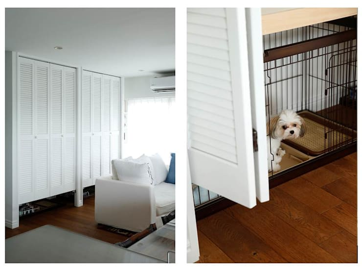dogs: 株式会社スタイル工房が手掛けたです。