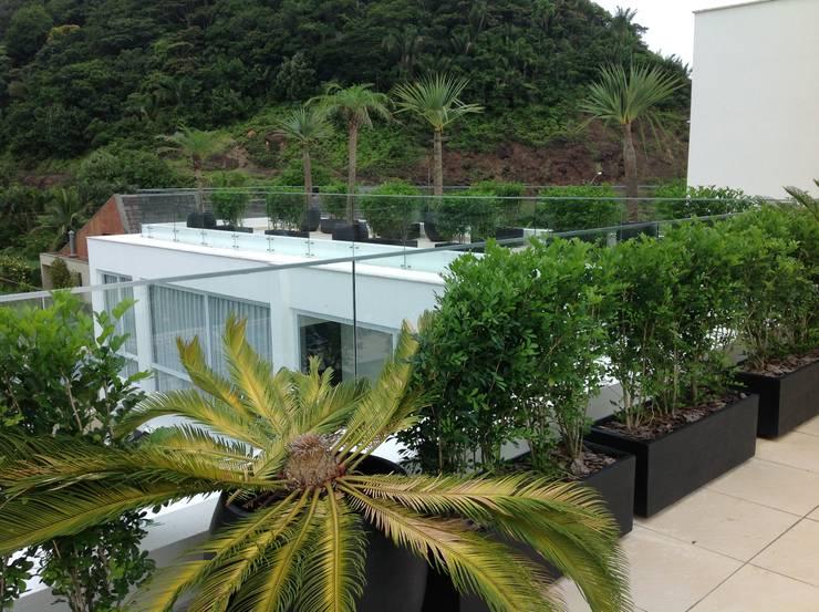 Cobertura : Terraços  por Bunkerlab arquitetura, design, ...+