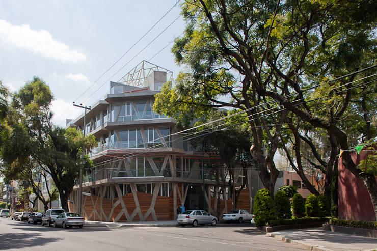 Nicolas San Juan:  de estilo  por Taller 13