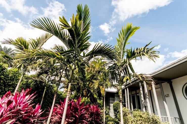Dilido Island House-Miami 2: Jardines de estilo  por Elías Arquitectura