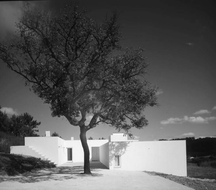 Pátio entrada: Casas  por bpm arquitectura lda