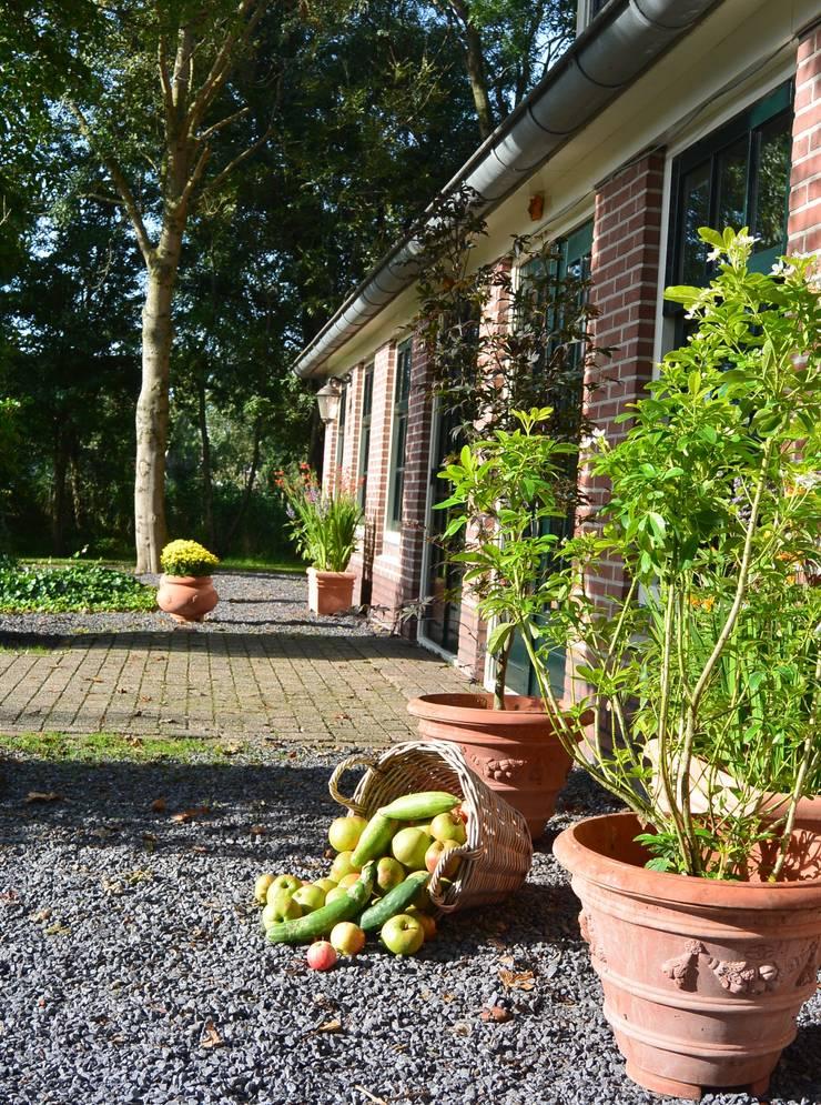 Levende gevel:  Balkon, veranda & terras door Terrecotte Benelux