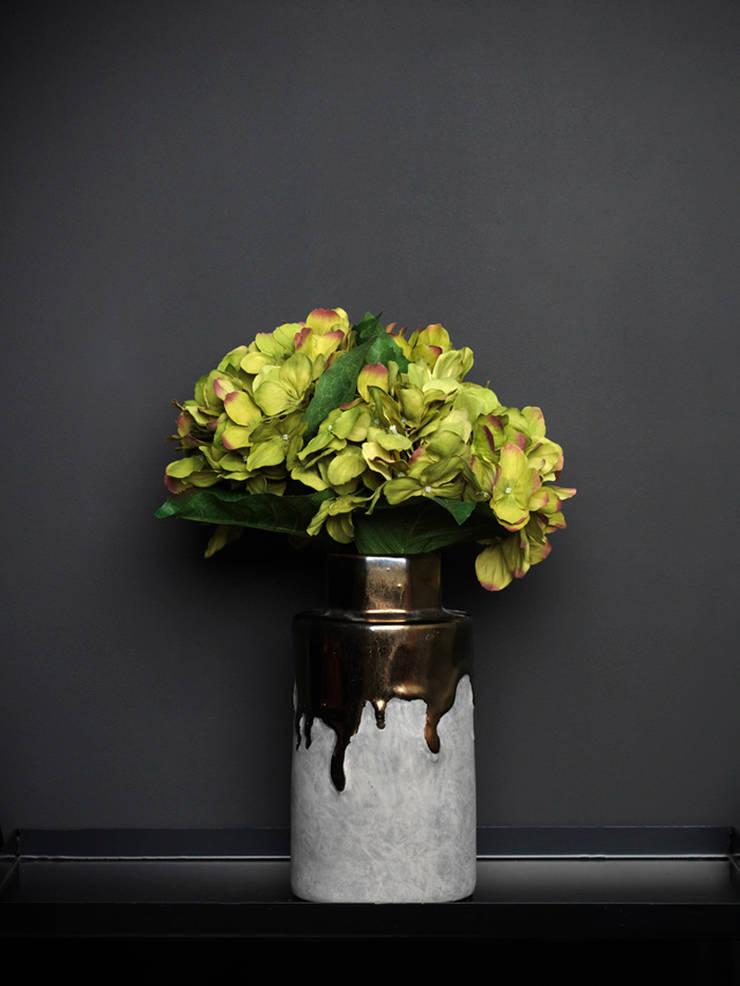 Green hydrangea stem par Dust Éclectique