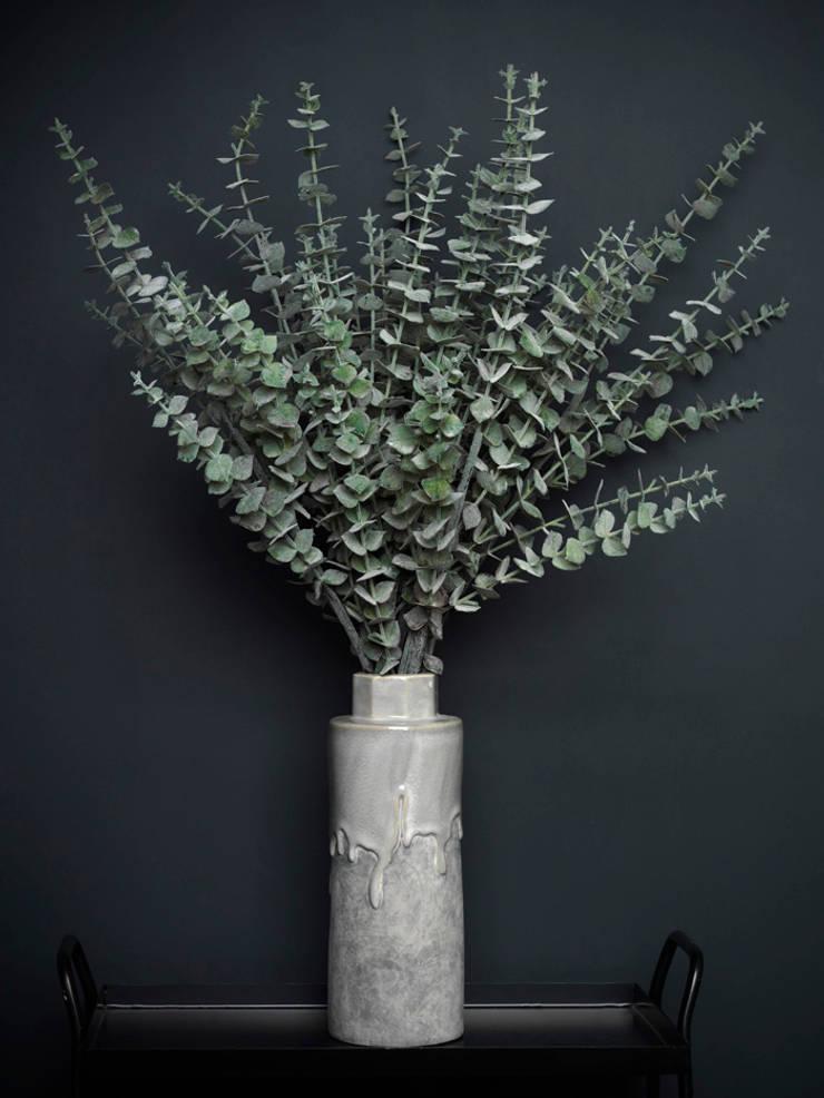 Grey/green eucalyptus spray par Dust Éclectique