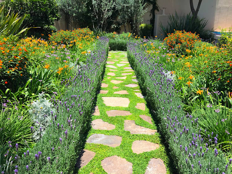 Jardin de Flores: Jardines de estilo  por Terra