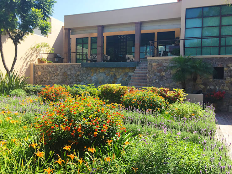 Jardines de estilo moderno por Terra