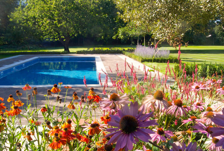 Jardines de estilo rural por Paul Dracott Garden Design