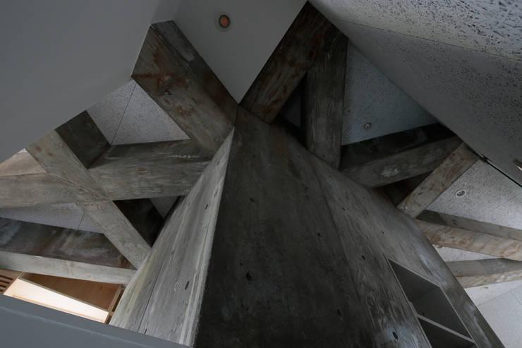 都市のツリーハウス: m-SITE-rが手掛けた廊下 & 玄関です。