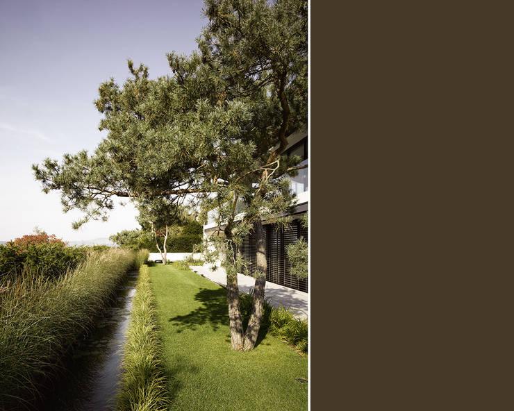 Objekt 188 / meier architekten: moderner Garten von meier architekten